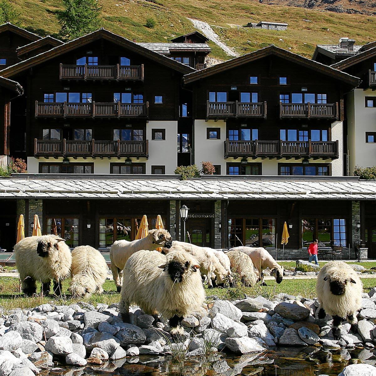 Riffelalp-Zermatt-portfolio