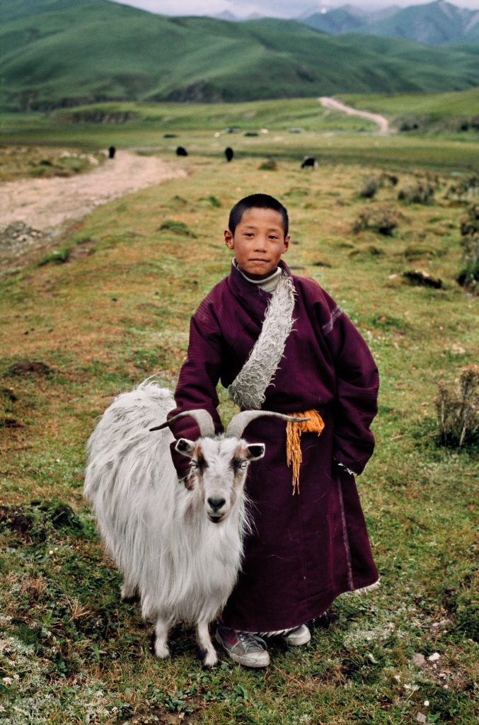 01128_15,Tibet, 09/2001, TIBET-10706NF. CAPTION: Young Nomad with his Goat. Litang, Tibet, 2001. IG: I photographed this young nomad boy and his family's goat near Litang,Tibet, a major center of Tibetan culture. With an elevation of nearly 4,000 metres (13,000 ft) it has a subarctic climate characterized by long, cold winters, and short summers. These goats produce fine cashmere wool highly prized for clothing and textiles. IG OLD: I photographed this young boy and his family's goat in Tibet. These goats produce fine cashmere wool highly prized for clothing and textiles. January 11, 2016 retouched_Sonny Fabbri 08/04/2016, Ashley Crabill, Emily Rogers, Scott Mclane, Morgan Shortell 04/03/2019 Final_print_Animal