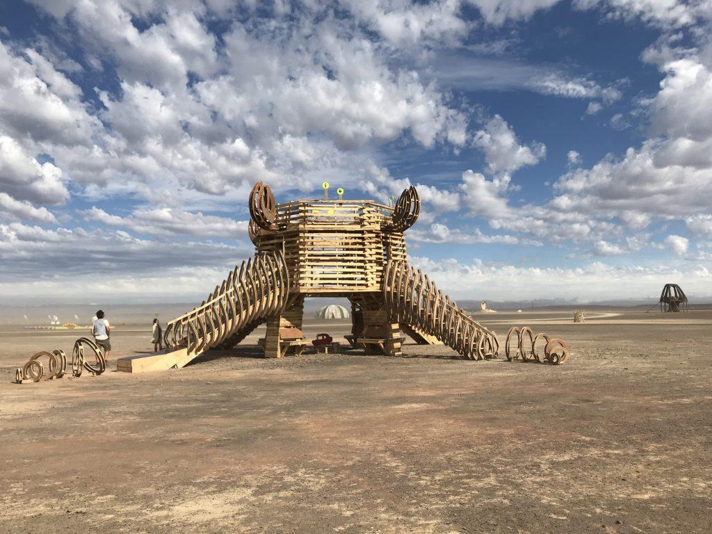 Afrika Burn_phantastische Kunst in der Weite der Tankwa Karoo